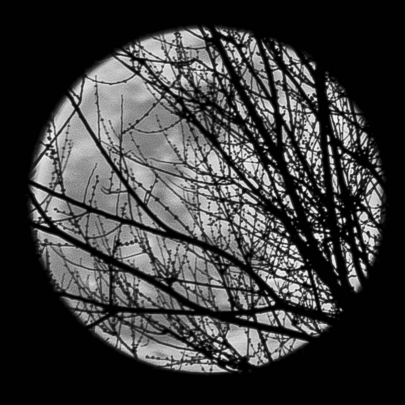 Superluna - Lucio Di Giovannantonio - Italy
