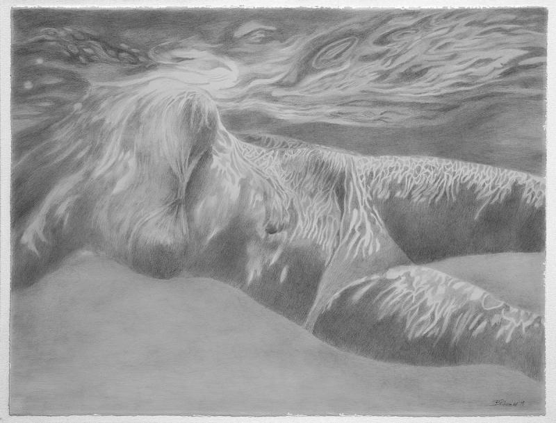 Virginia Filippousi,Life in the aquarium,60x80cm,Gkouas an pencil on paper