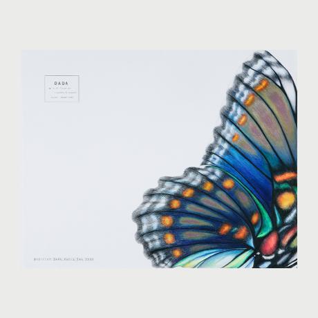 Kali KATSOURI ''Papillon Dada'' (65x51)cm, Coloured pencils on paper 2008